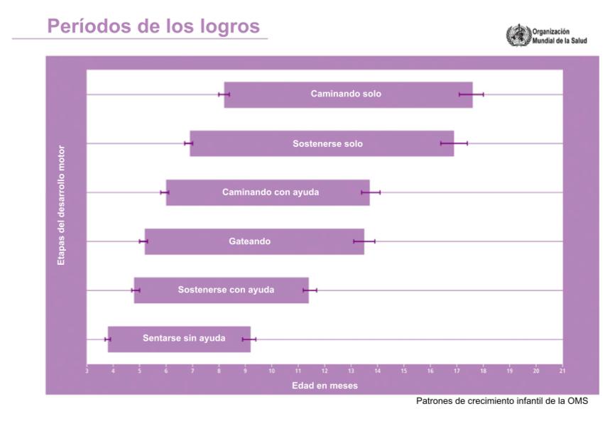 Gráfico con los hitos del desarrollo motriz y los rangos de edad a los que se obtienen según la OMS